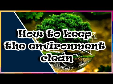 What Do Saprophytes Help In Cleaning The Environment?